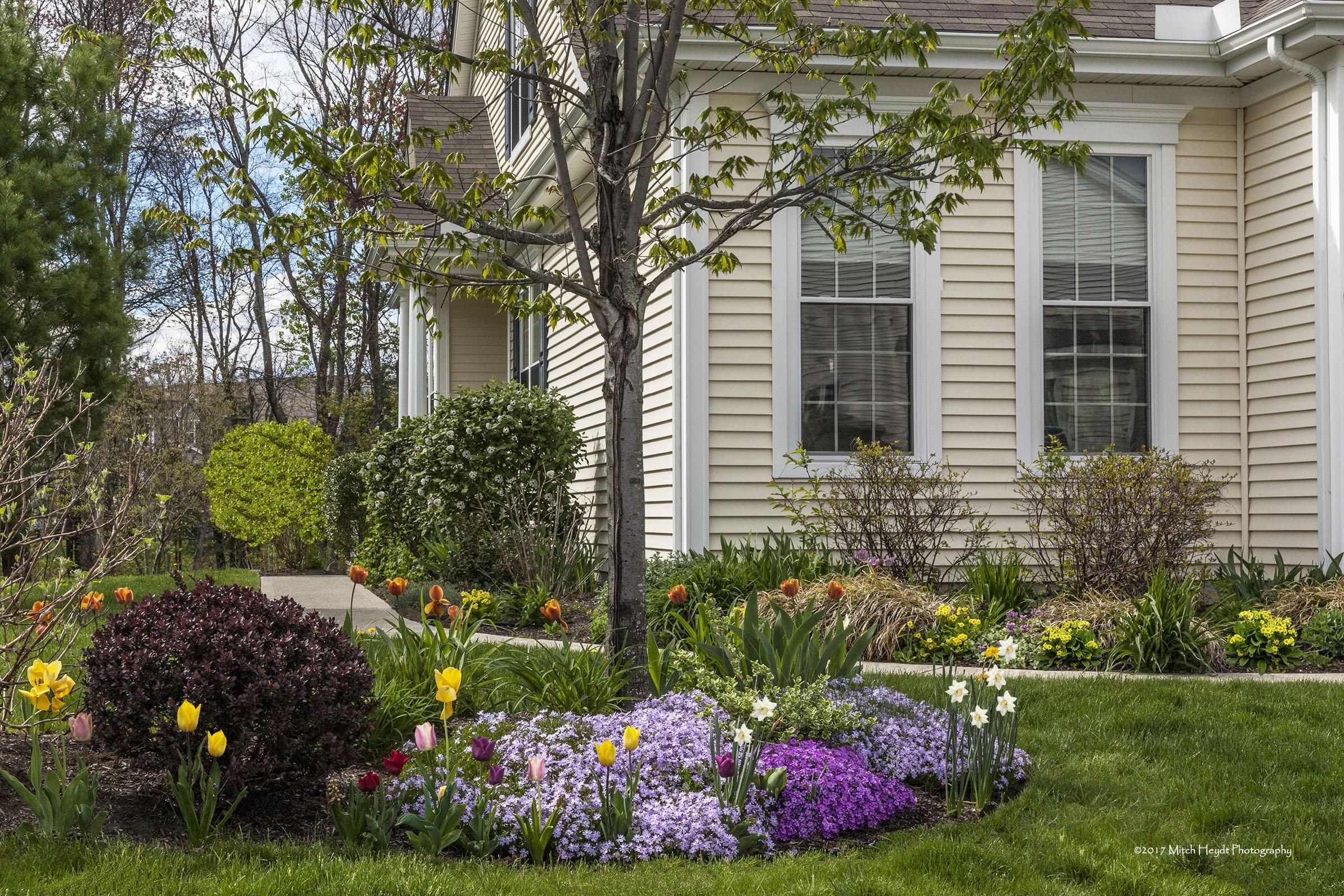 Arbor Glen Condo in Bloom